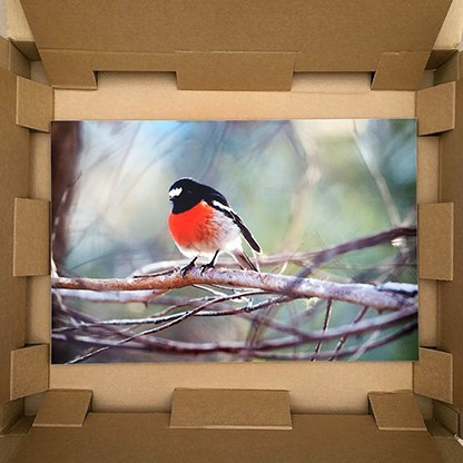 metal print packed in box for shipping